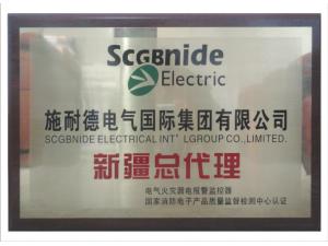 施耐德电气国际集团有限公司新疆总代理